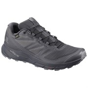 Кроссовки SALOMON SENSE RIDE GTX NOCTURNE